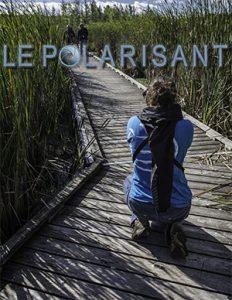 polarisant-2016-3-couverture-timbre