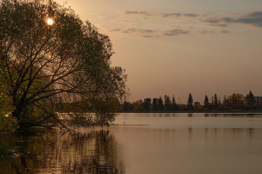 Ottawa Arboretum - SG Nature ©Nelson Mercier
